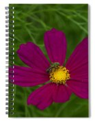 Metallic Green Bee On Cosmos Spiral Notebook