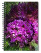 Metamorphosis Spiral Notebook