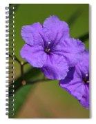 Mexican Petunia Spiral Notebook