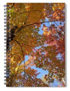Mezmerizing Mix Of Color And Texture Spiral Notebook