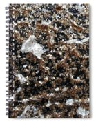 Mica Trial Gold With Pearl Spiral Notebook