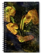 Michigan Fresh Water Ripples Spiral Notebook