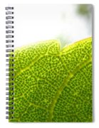 Micro Leaf Spiral Notebook