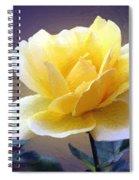 Midas Kiss Spiral Notebook
