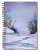 Midday Winter In Maine Spiral Notebook