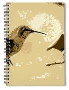 Midnight Hummingbird Spiral Notebook
