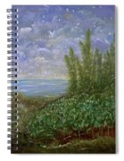 Midnight Lullaby Spiral Notebook