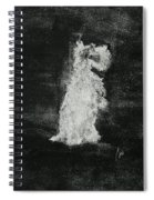 Midnight Sonata Spiral Notebook