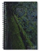 Midnight Tree By Jrr Spiral Notebook