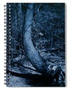 Midnight Woods Spiral Notebook