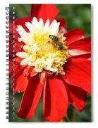 Midsummer Beauty Spiral Notebook
