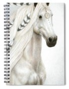 Midwinter Moon Spiral Notebook