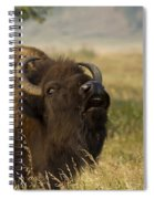 Mighty Bison Spiral Notebook