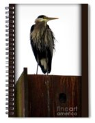 Mighty High Heron  Spiral Notebook