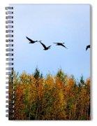 Migratory Flight Spiral Notebook