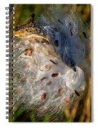 Milkweed 3 Spiral Notebook