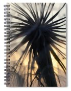 Beauty Of The Dandelion 1 Spiral Notebook
