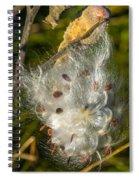 Milkweed 4 Spiral Notebook