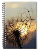 Milkweed 5 Spiral Notebook