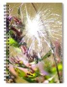 Milkweed Cotton  Spiral Notebook