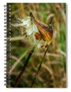Milkweed Pod Spiral Notebook