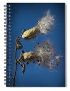 Milkweed Pods On A Blue Background  Spiral Notebook