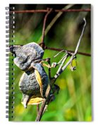 Milkweed Retirement  Spiral Notebook