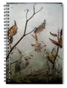 Milky Milkweed Spiral Notebook