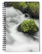 Milky Stream Spiral Notebook