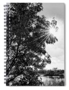 Mill Creek Marsh Afternoon Sun Spiral Notebook