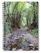 Miller Grove 2013 Horizontal Spiral Notebook