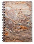 million years ago 2 - An enormeous shell fossile in top of cova des coloms in Es Migjorn - Menorca Spiral Notebook