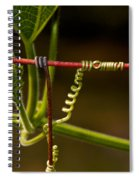 Mimic Spiral Notebook