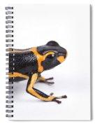 Mimic Poison Dart Frog Spiral Notebook