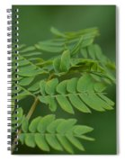 Mimosa Greens Spiral Notebook