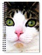 Mina's Green Eyes Spiral Notebook