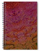 Mind Meld Spiral Notebook
