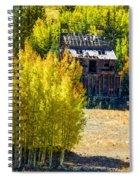 Mine Shack In Aspens Spiral Notebook