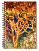 Mineral Branches Hot Springs Spiral Notebook