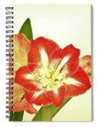 Minerva 2 Spiral Notebook