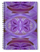 Mingus Randy Abstract Spiral Notebook