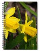 Mini Daffs Spiral Notebook