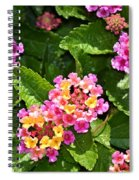 Mini Flowers Spiral Notebook