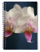 Mini Orchids 2 Spiral Notebook