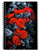 Mini Roses On Walk Spiral Notebook
