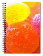 Mini Sugar Fruits Spiral Notebook