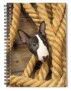 Miniature Bull Terrier Puppy Spiral Notebook