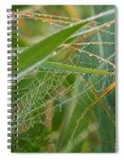 Miniature Pearl Strings Spiral Notebook