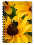 Mining Gold Spiral Notebook