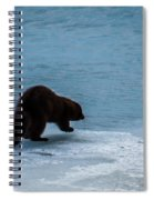 Mink Spiral Notebook